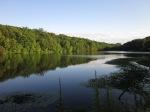 Lake at Rockefeller Preserve in summer