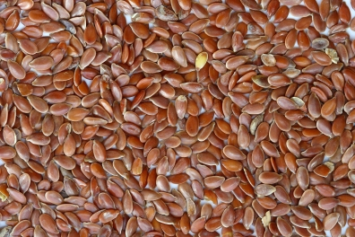 Brown_Flax_Seeds