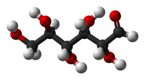Glucose molecule. Our primary source of fuel and the building block of all carbohydrates. Source: Wikipedia.