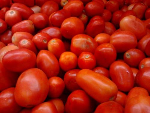 Roma_or_Bangalore_Tomatoes_(Indian_hybrid)