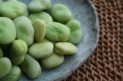 Broad beans. Source: Public domain.