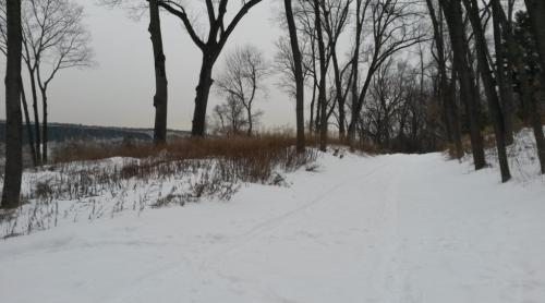 The Old Croton Aqueduct Trail several weeks ago